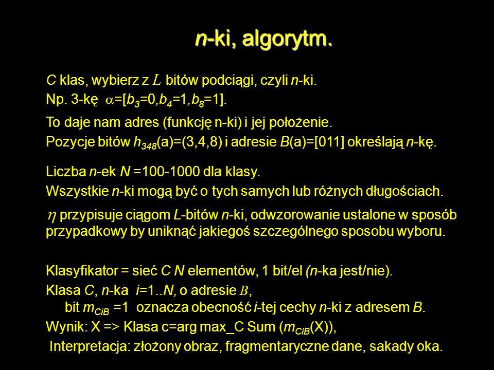 n-ki, algorytm. C klas, wybierz z L bitów podciągi, czyli n-ki. Np. 3-kę a=[b3=0,b4=1,b8=1]. To daje nam adres (funkcję n-ki) i jej położenie.